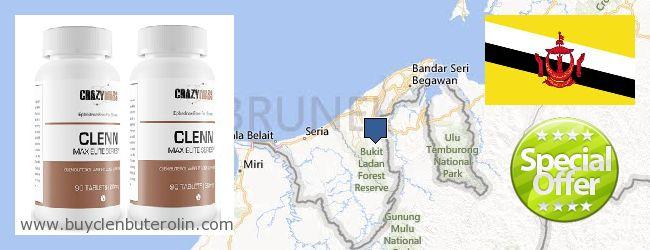 Where to Buy Clenbuterol Online Brunei